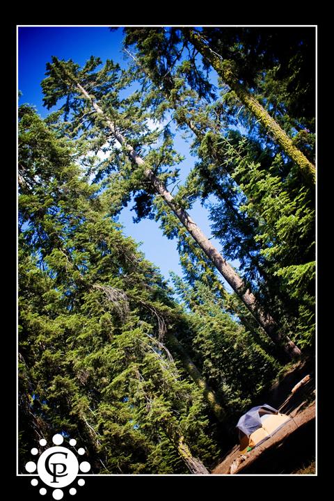 21cabreraproductions_campingsequia